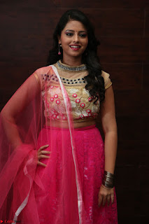 Geethanjali sizzles in Pink at Mixture Potlam Movie Audio Launch 051.JPG