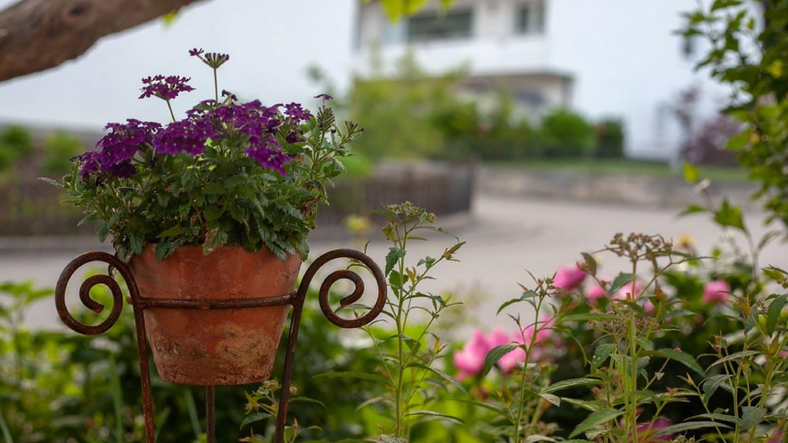 Decoración para tu jardín: Macetas fáciles de hacer