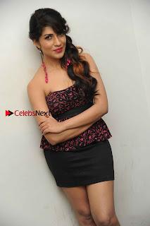 Kannada Actress Iti Acharya Stills in Strapless Dress at Dhwani Movie Press Meet  0003.jpg