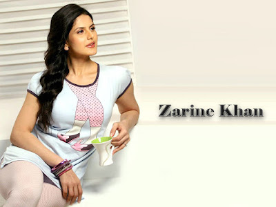 new latest hd wallpaper Sweet  Zarine Khan HD  wallpaper | hd pictures  Zarine Khanhd |   Zarine Khan HD Wallpapers |  Zarine Khan HD  HD wallpapers/images