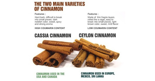 The cinnamomum cassia