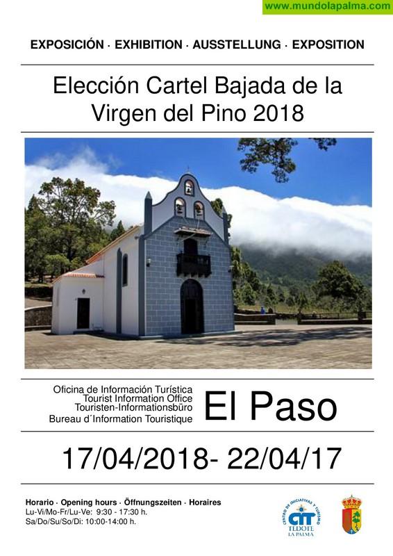 Expuestas las obras candidatas a cartel anunciador de las Trienales de El Paso