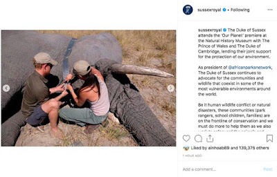 Meghan and Harry in Botswana in 2017
