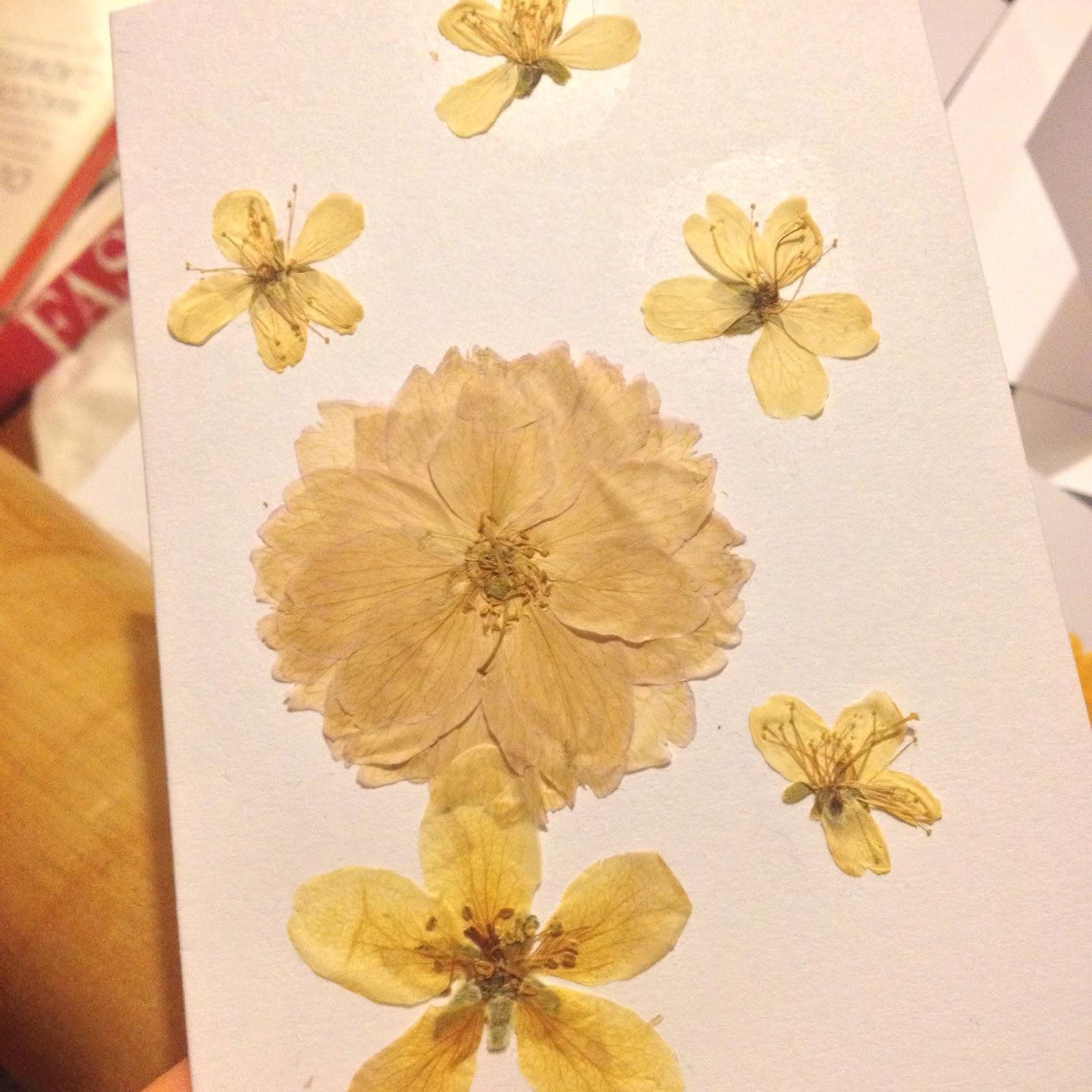 Spring Flower Pressing Jojos Knitting Emporium