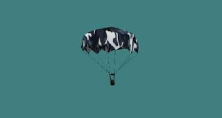 parachute.mdll