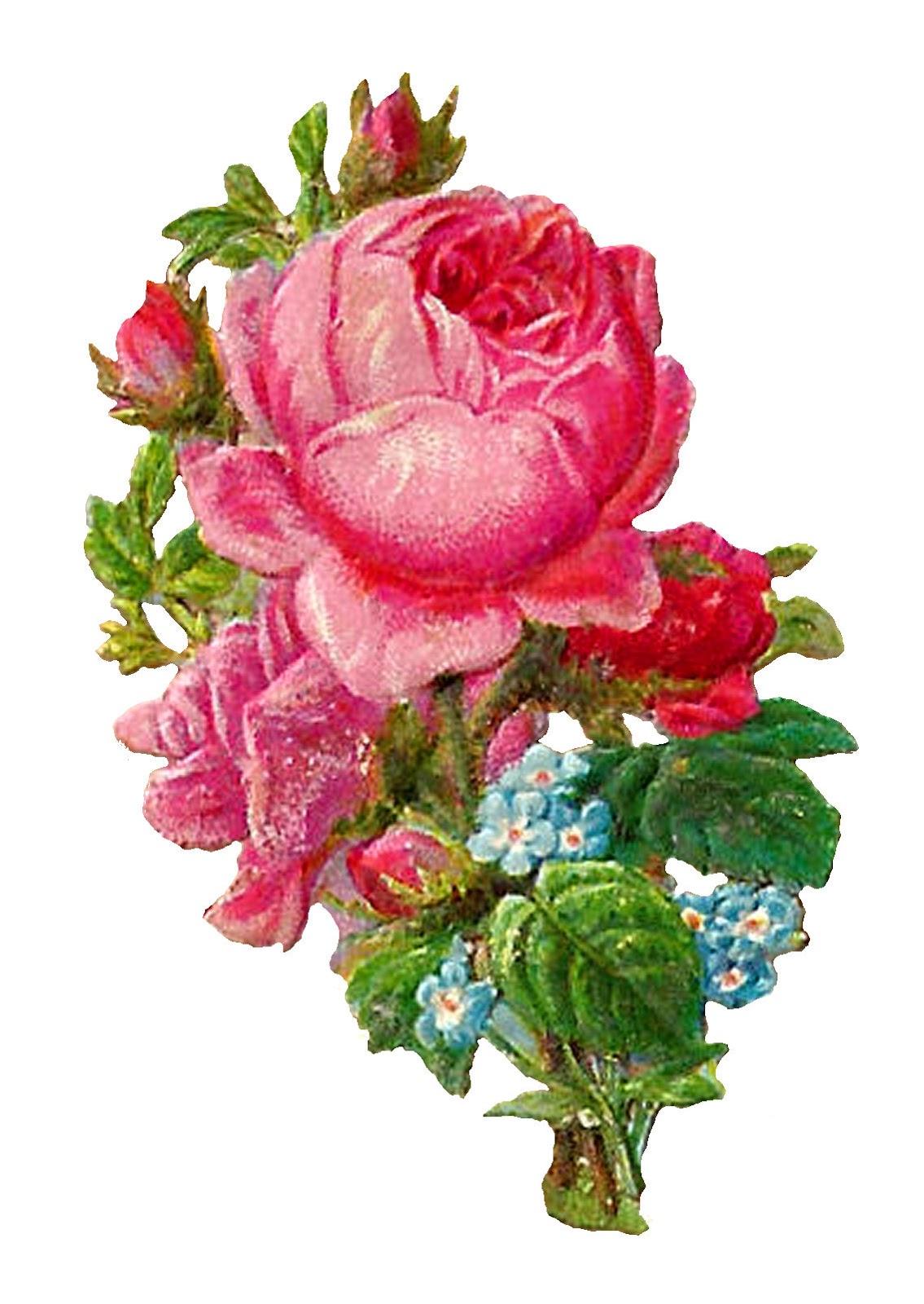 rose flowers digital design - photo #23