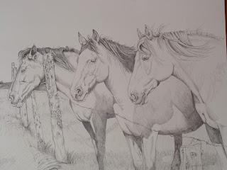 Dibujo a lápiz de caballos