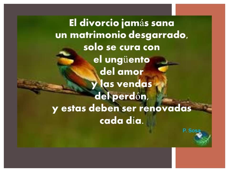 Reflexiones Y Frases Divorcio