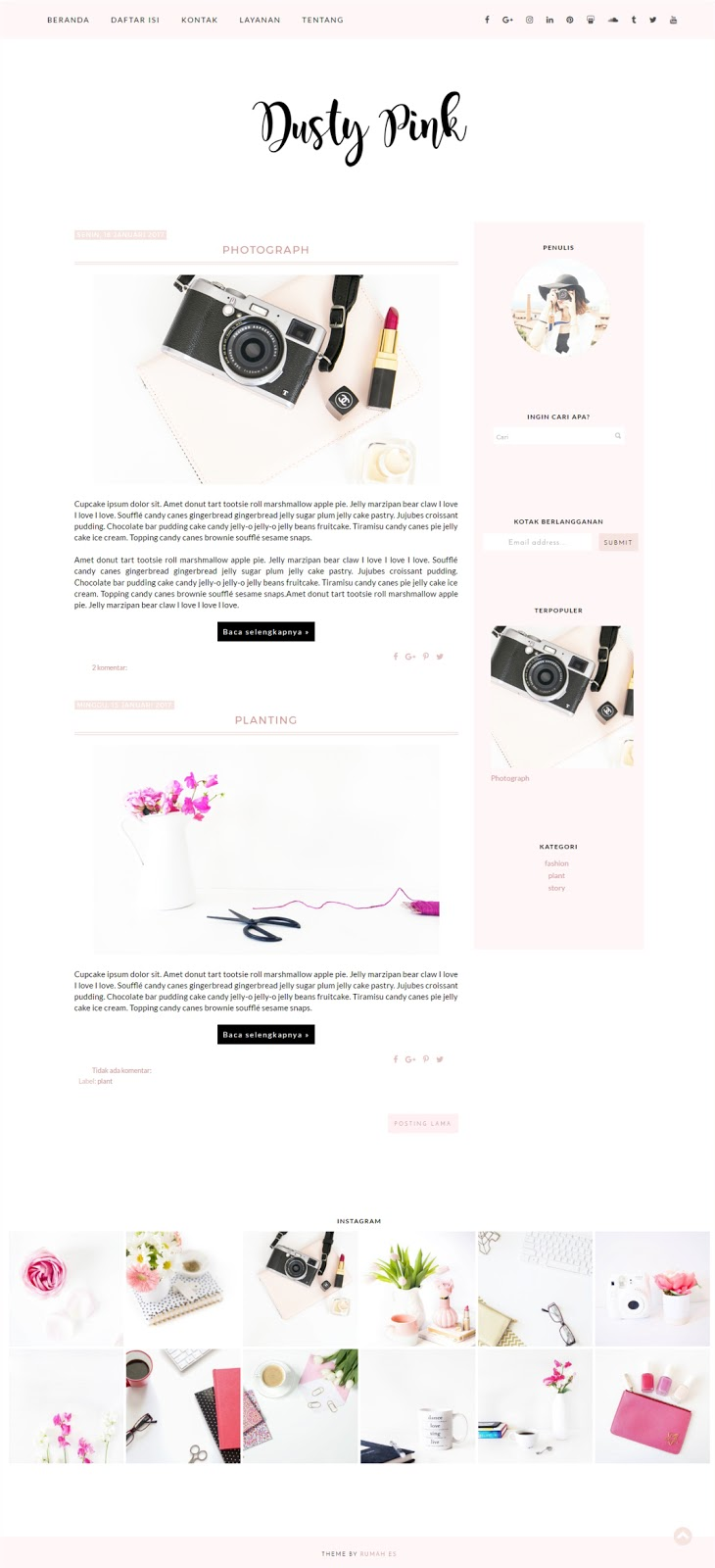 dusty-pink-blogger-theme