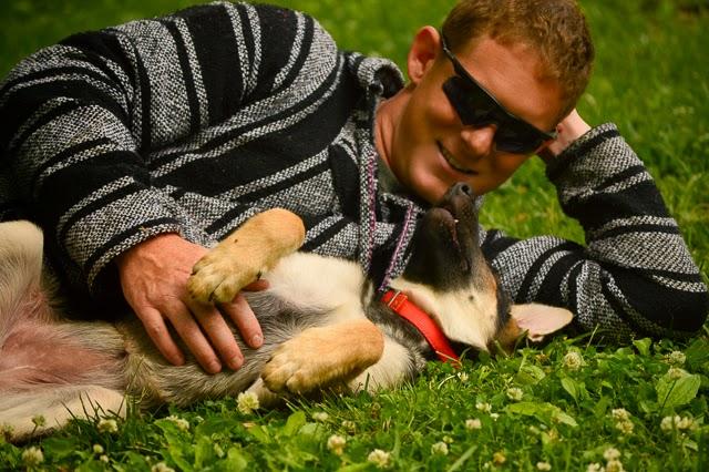 Puppy love german shepherd