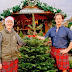 Planning for the Perfect Christmas Tree - An Interview With Sam Lyle of Pines and Needles
