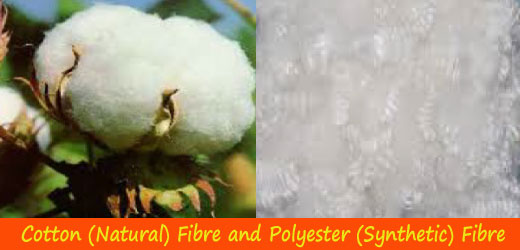 Natural and Synthetic Fibre