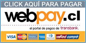 Paga seguro con PayPlus