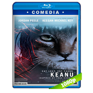 Keanu (2016) BRRip 1080p Audio Dual Latino-Ingles