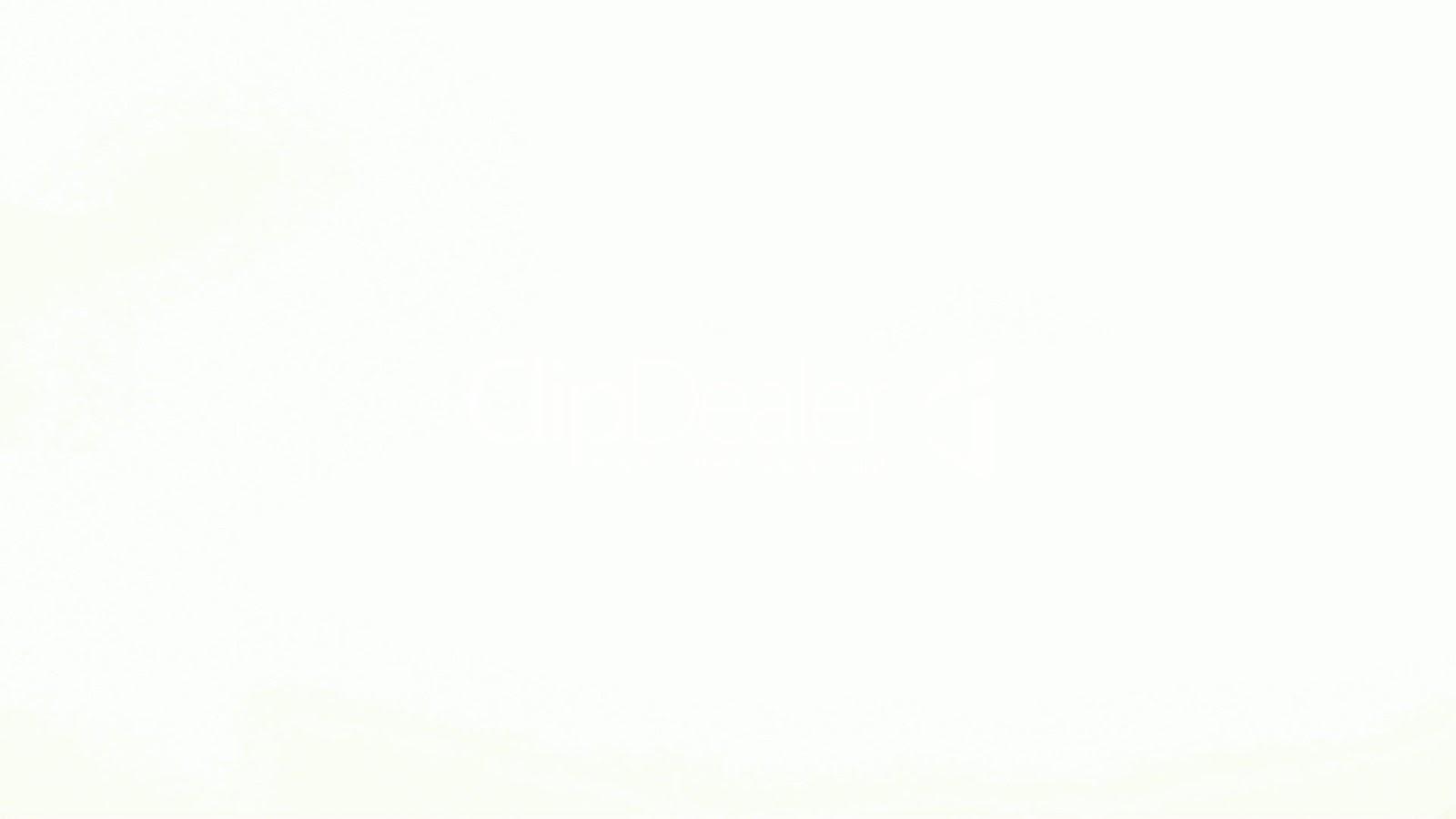 Ecran Iphone  Blanc