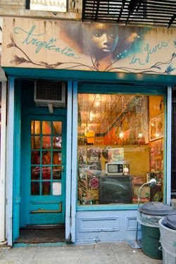 Tropicalia in Furs Record Store Greenwich Village New York