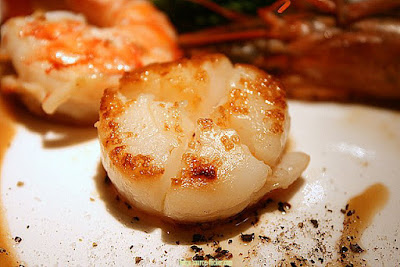 Scallop, The Rich Nutritious Solid Seashell.