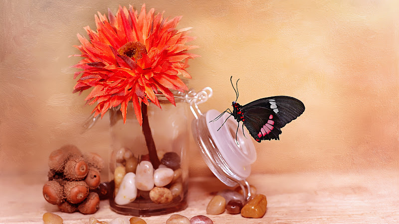 Fabric Flower and Butterfly HD