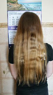 Dzień dla włosów