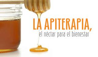 48 - Las primeras abejas - El Apicultor Español: Actitud y Aptitud Apícola
