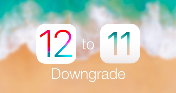 How to Downgrade From Ios 12