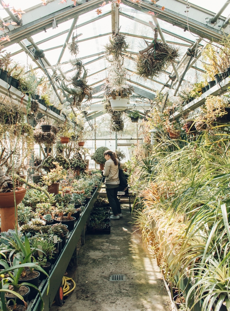 Botanische Tuin Zuidas - Amsterdam