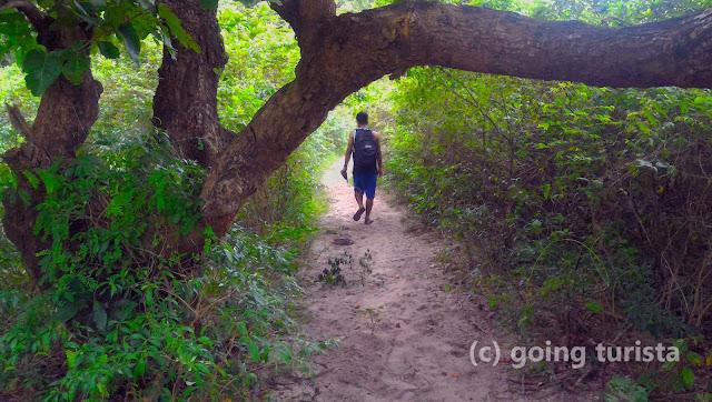 Trail to Mount Mabanban Falls