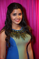 Anupama Parameswaran in lovely shaded gown ~  Exclusive 23.JPG
