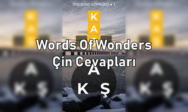 Words Of Wonders Çin Cevapları