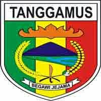 Gambar untuk Hasil Tes Kompetensi Dasar (TKD) CAT CPNS 2014 Kabupaten Tanggamus