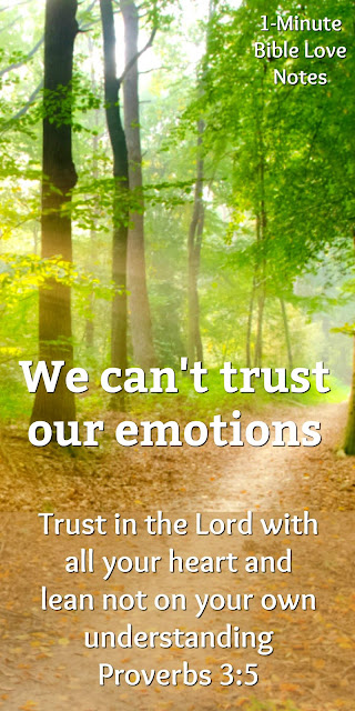 Emotions, Logic, or God's Word - Which Drives You?