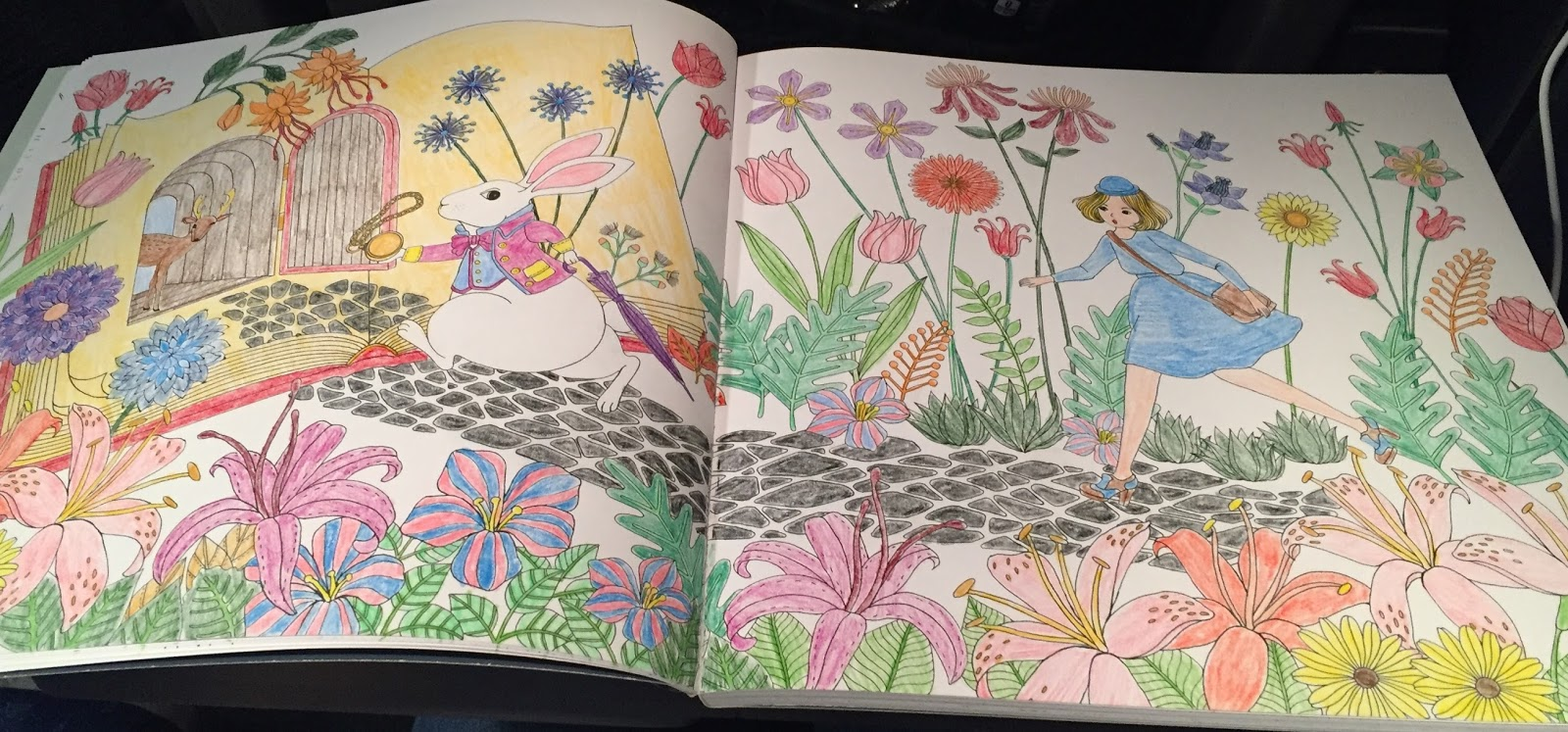 The botany coloring book by paul young - Other Features Of Note Are A To From Dedication Page And The Removable Dust Jacket That You Can Color The Inside Of For An Extra Long Coloring Experience