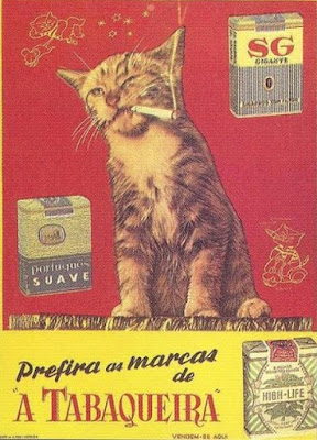 Old ad featuring cigarette-smoking kitten