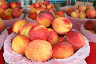 Dos and Don'ts of 2015 Louisiana Peach Festival
