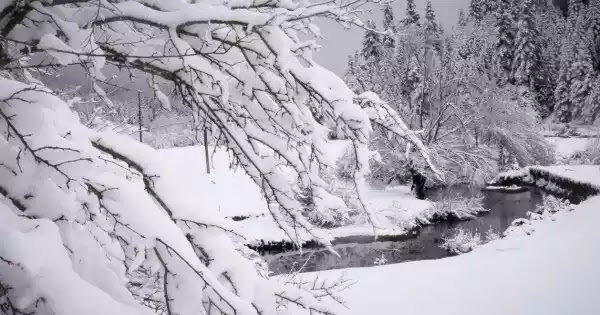 Σιβηρικό ψύχος και χιόνια από την Δευτέρα (βίντεο)