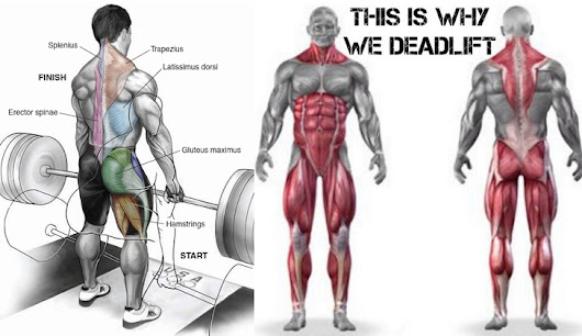 Five Reasons Why You Should Deadlift