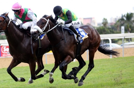 St Tropez for the Joey Ramsden yard - Vodacom Durban July