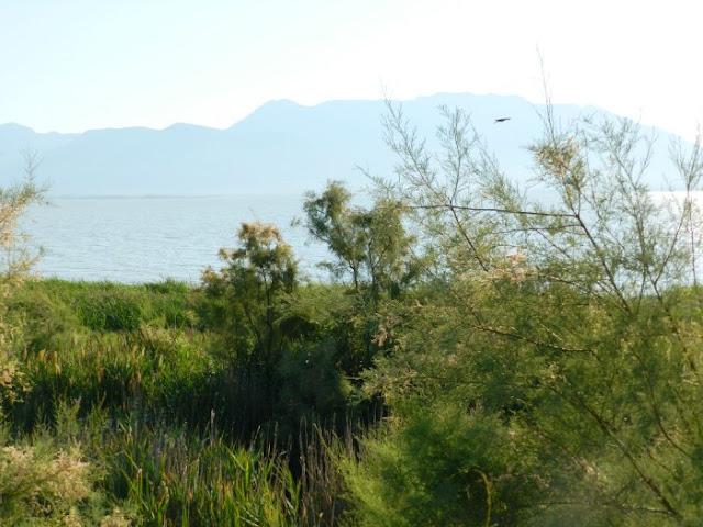 West side of Utah Lake