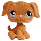 Littlest Pet Shop Pet Pairs Retriever (#320) Pet