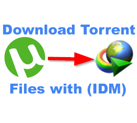 download-torrent-files-with-idm-torrent-to-idm