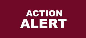 ACTION ALERT in all capital letters, white, against a dark red background