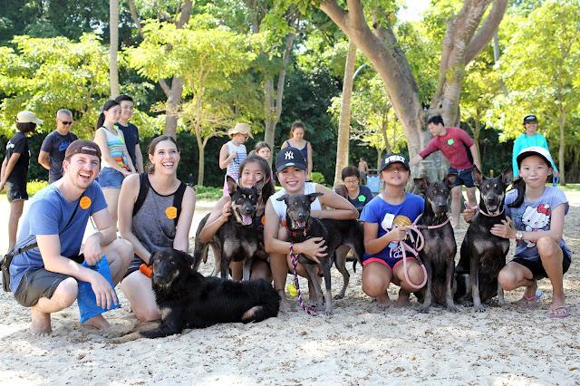 Pet events in Singapore Adoption