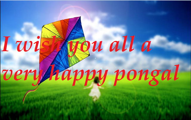 2017 happy pongal kite images