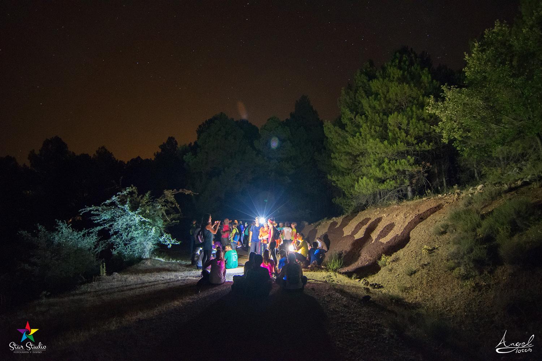 En el bosque de noche