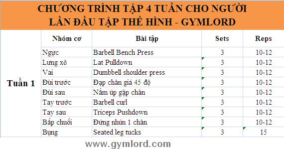 Chuong trinh tap the hinh hieu qua nhat