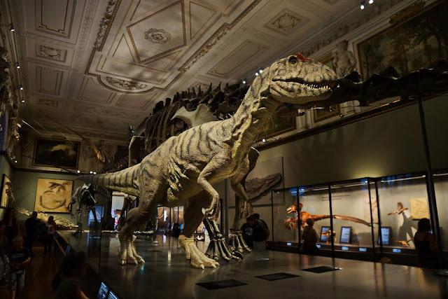 Passear pelos Museu de História Natural e Museu de História da Arte em Viena