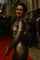 Actress Catherine Tresa in Golden Skin Tight Backless Gown at Gautam Nanda music launchi ~ Exclusive Celebrities Galleries 028.JPG