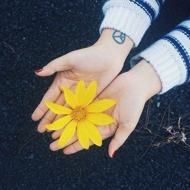 Thơ Đà Lạt mưa - Các bài thơ về Đà Lạt ngày mưa buồn