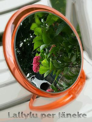 specchio trasparente jäneke