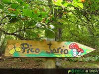 Señalizador al Pico Jario